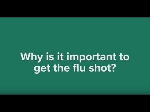Flu mist or flu shot?