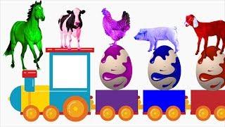 Pelajari Warna Dengan Telur Super dan Hewan Ternak | Nama Dan Suara Hewan Ternak | Tokek