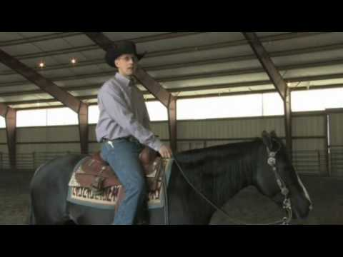 Managing the Reining Horse:  Exercises