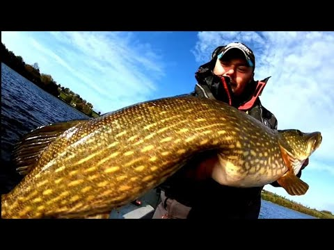 In Search Of Monster Pike!