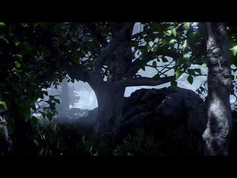 Ancient Forest with Celtic Sounds | ASMR, Soundscape, Music, Rain and Wind | 1 hour