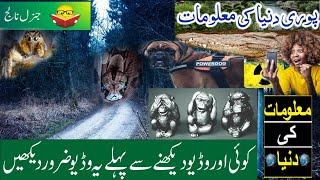 Dilchasp Malomat In Urdu | General Knowledge | Interesting Facts You Never Knew