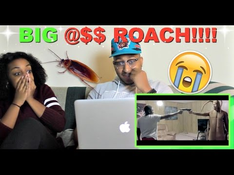RDCworld1 Ft. Berleezy  'THE ROACH THAT GOT TIRED OF THE BS /A BUG'S LIFE (Short Film)' Reaction!!