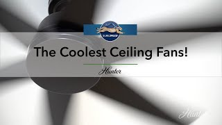 The Coolest Ceiling Fans! | Surespeed® by Hunter