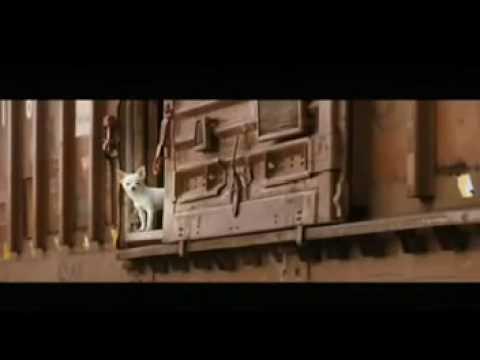 Trailer do filme Perdido pra cachorro 3