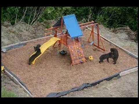 Superbe Backyard Playground Bears   Stills