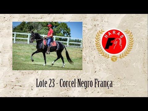 Corcel Negro França