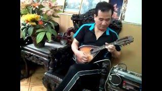 """Thanh Tùng độc tấu mandolin """" Giải phóng Điện Biên """" """" Tây Bắc Mừng vui chiến thắng"""""""
