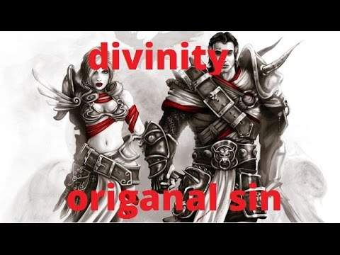 Divinity Original sin: enhanced edition gameplay splitscreen