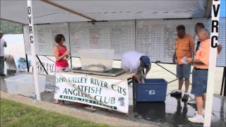 2014 Ohio Valley River Cats Catfish Tournament Team-2 Rising Sun, Indiana