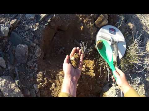 Digging a bunch of gold nuggets, saying goodbye to the desert. Metal Detecting Gold GPZ 7000