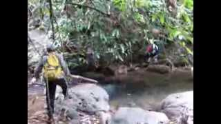 El Capitan hunting a snake, Laos