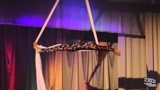 32 Альшевская Анна — Воздушные полотна, любители