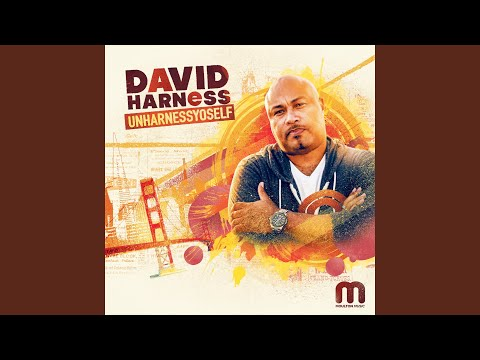 UnHarnessYoSelf mixed by David Harness (Continuous DJ Mix)