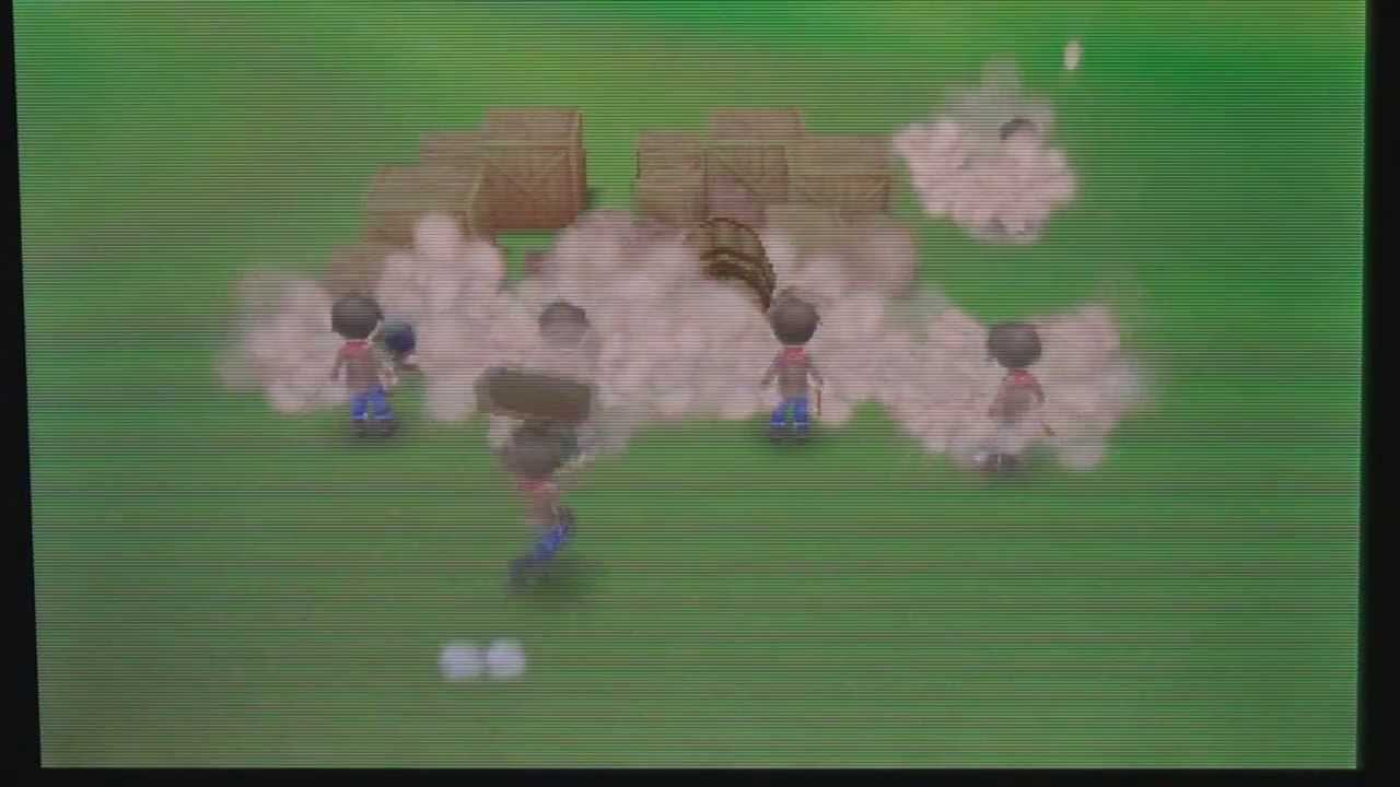 Triajojo farms in Harvest Moon 3D: A New Beginning on 3DS [11] - Finally a  supply shed