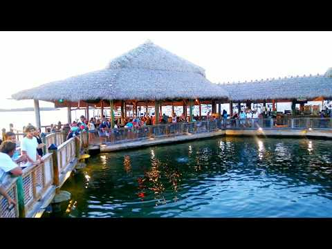 Islamorada Fish Company Waterfront, Great Food, Great Sunsets On The Bay, Watch The Tarpon & Sharks