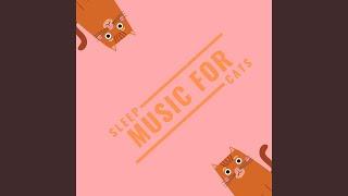 Calm Cat Music