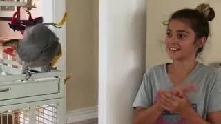 Headshaking birdy