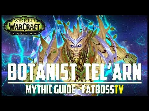 High Botanist Tel'arn Mythic Guide - FATBOSS