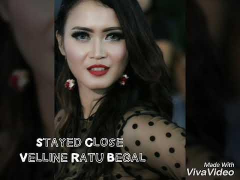 Velline Ratu Begal Stayed Close