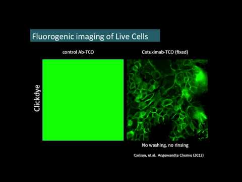 """""""Click"""" Chemistry In Vivo - New Tools for Molecular Imaging"""