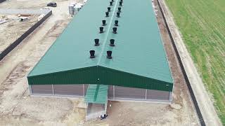 Budowa pod klucz fermy loch z żywieniem na mokro/Liquid feeding system on reproduction farm turn key