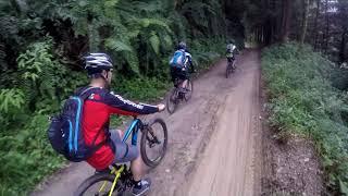 雙龍林道、雙龍瀑布、天時棧道、二部曲(下坡篇)~台灣越野單車(登山車)旅行路線之50