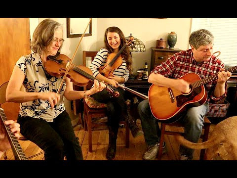 """Brilliancy"" - Old-time Fiddle Jam Session"