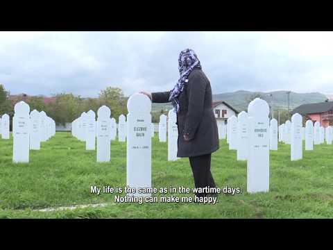 Debate regarding Ratko Mladic's verdict