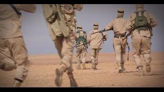 خبراء أمنيون لأخبار الآن: المصلحة تحكم العلاقة بين داعش وبوكوحرام