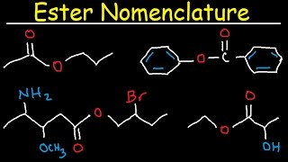 Naming Esters - IUPAC Nomenclature, Branches, Substituents, & Benzene Rings - Organic Chemistry