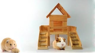 How to Make Hamster House from Popsicle Sticks