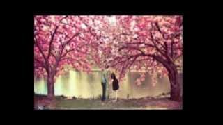 Bolini Valobashi-Rana & Akhi...(Love Guru).wmv