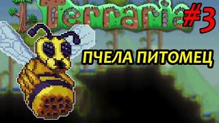 ПЧЕЛА ПИТОМЕЦ - TERRARIA # 3