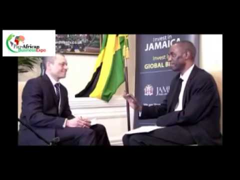Pan  African Business Expo Interview with Lawrence   JAMPRO