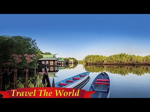The Gambia's lush wild side is Africa at its finest  - Travel Guide vs Booking
