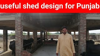 how to build buffalo shed | animals shed design in pakistan