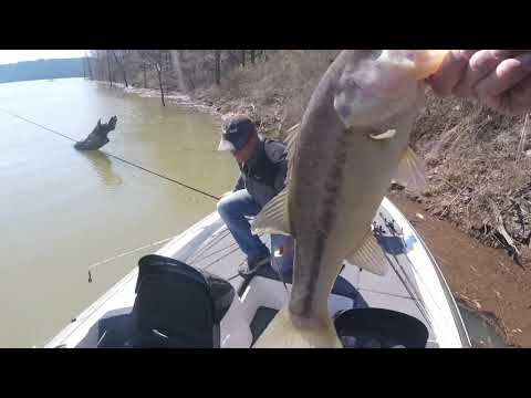 3rd Stop Of The Mr Bass Of Arkansas Tournament Trail- Greers Ferry