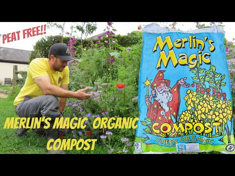 Merlins Magic Organic Peat Free Compost! Made In Wales In The UK