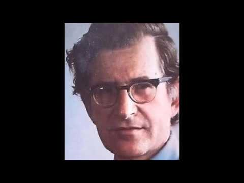 Noam Chomsky - Mind-body Problem II