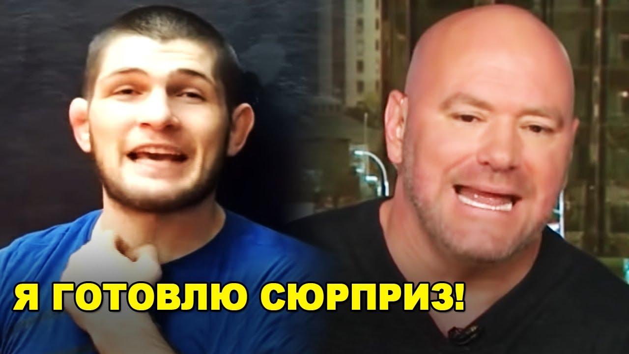 ГОТОВЛЮ СЮРПРИЗ! Хабиб сделал заявление / Хамзат Чимаев вернулся к тренировкам! - скачать с YouTube бесплатно