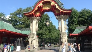 видео Берлинский зоопарк