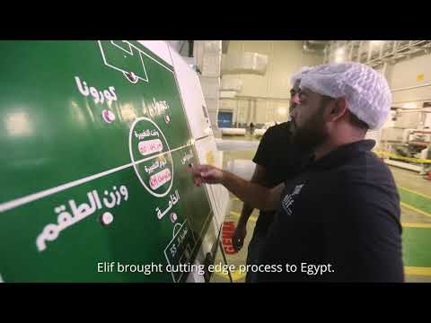 Manufacturing Flexible Packaging in Egypt