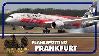 Planespotting Frankfurt Airport   Juli 2019   Teil 1