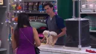 The Carbonaro Effect - Kenneled Dog