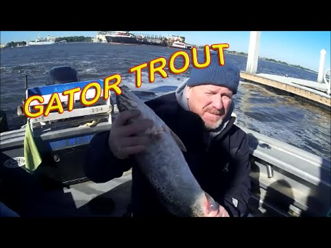 Trophy Redfish & Trout in Burning cold - JACKSONVILLE FL.
