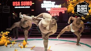 Sumo Sushi Show Teaser