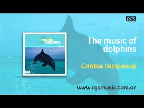 The music of dolphins - Cantos turquesas