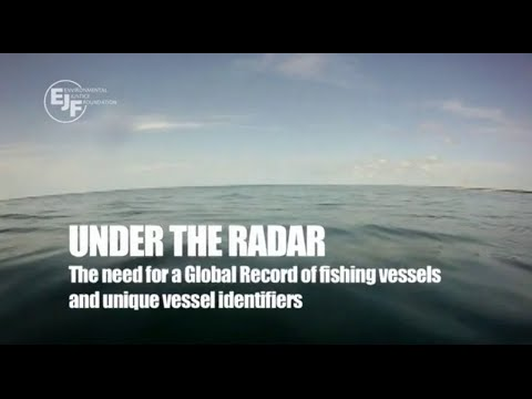 Under the Radar - The Need for a Global Record of Fishing Vessels and Unique Vessel Identifiers