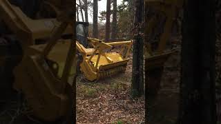Video still for SEPPI m  MINIFORST Hyd CL 200 Tree Mulching